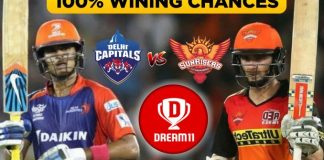 IPL 2019, Match 30: SRH vs DC Best Dream11 Team Today Prediction