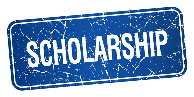SCHOLARSHIP: CENTRAL SOUTH UNIVERSITY IN CHINA, 2018