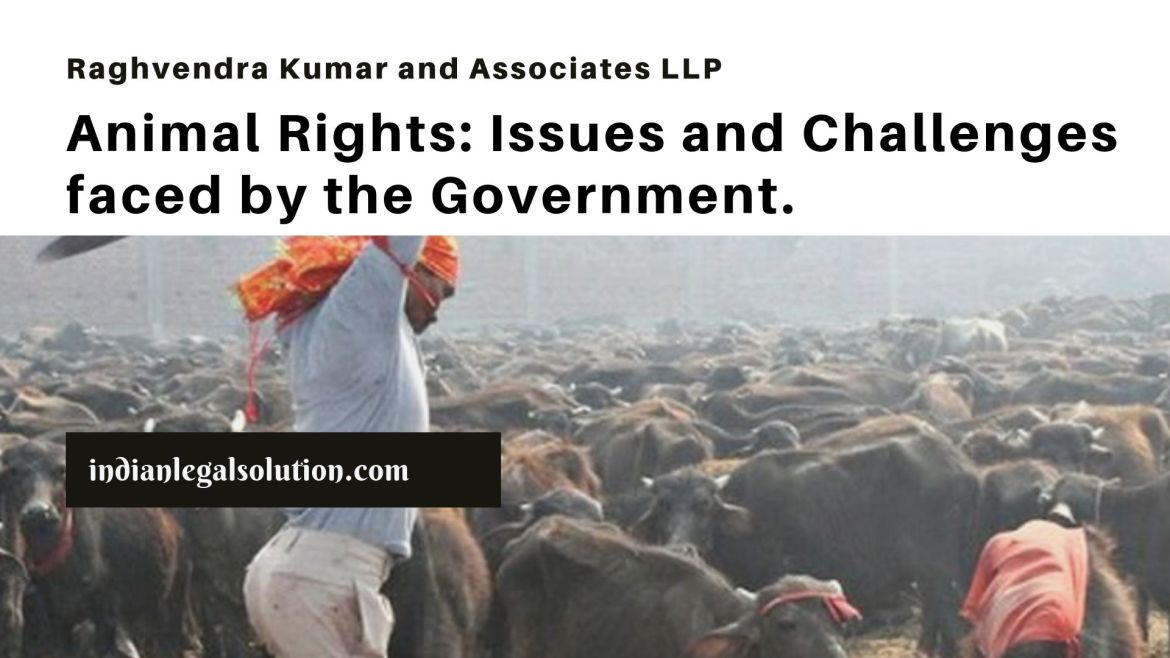 Animal Rights: Issues and Challenges faced by the Government.