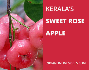 Kerala's Sweet Rose Apple