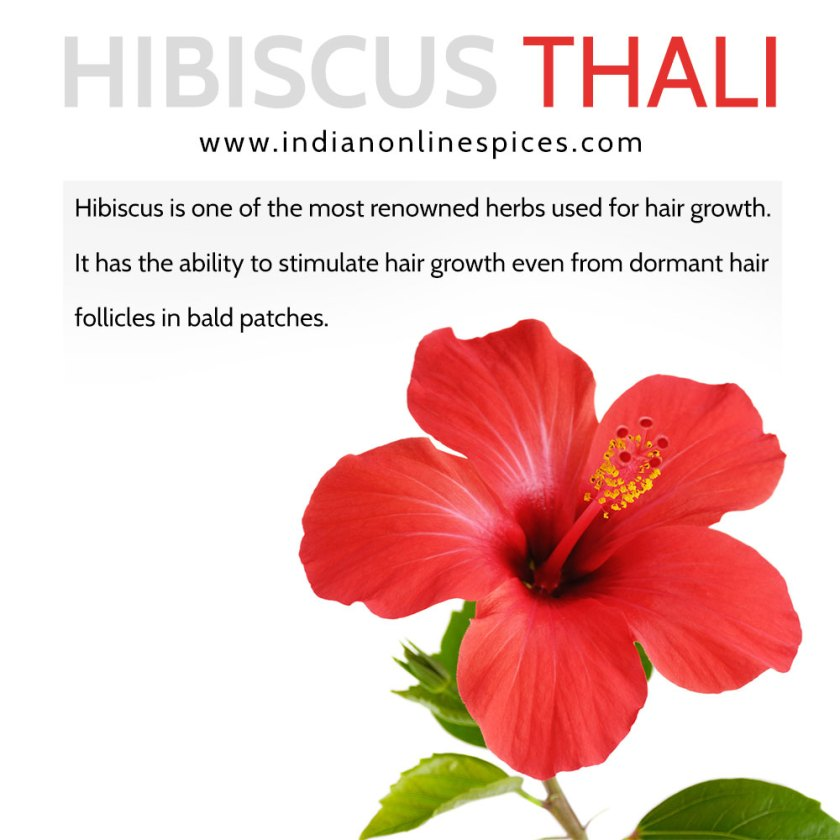 Chembarathi Thaali Hibiscus Thaali Natural Hair Treatment