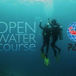 Scuba Classes For August '17