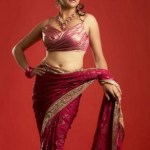 Sexy Indian girl in Blouse showing Big Boobs and Cleavage desi boobs pics hot boobs images Hot Indian Girls photos (3)