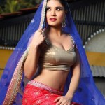 Sexy Indian girl in Blouse showing Big Boobs and Cleavage desi boobs pics hot boobs images Hot Indian Girls photos (14)
