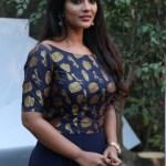 Aishwarya Rajesh XXX Photos South Actress Full HD Porn 2019 Indian Actress Porn Free Download (1)