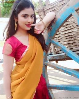 Sexy Indian Bhabhi In Saree Blouse Very Hot And Sexy Striping Saree Photos (11)