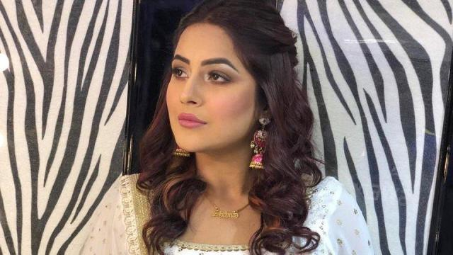 Bigg Boss 13 Contestant Shehnaaz Gill Nude Fucking XXX HD Porn Pic Punjabi Actress Sex Photos 1