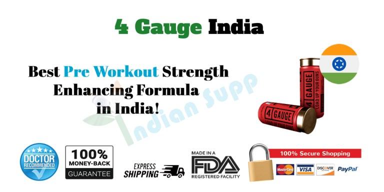 4 Gauge India Review