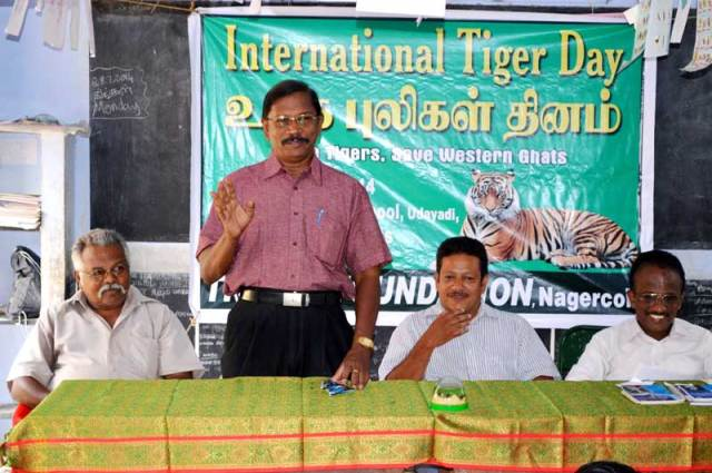 tiger_day_2014davidson_web_9054