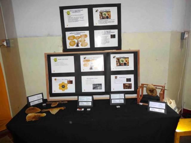 gudalur_honey_festival06_display_hives_bees_web