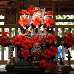27hallaki_shrine_puja01_v_lakshmanan11