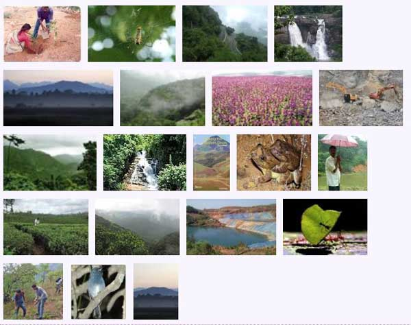 west_ghats_ecology_animals_screenshot_06