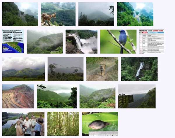 west_ghats_ecology_animals_screenshot_07