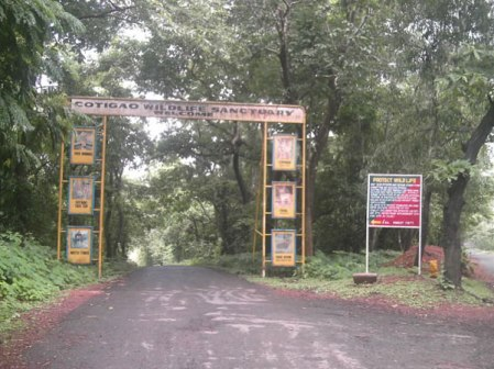 Cotigao Wildlife Sanctuary Goa