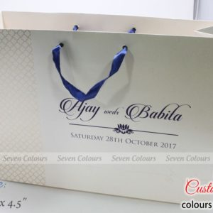 Bag-Large-12x16x4-Ajay