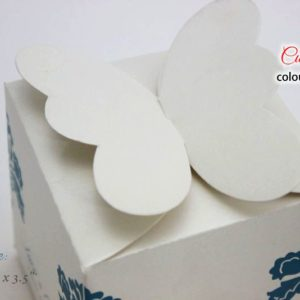 Sweet-Cake-Box-Butterfly-Style-2
