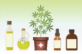 Photo of Things to Know about CBD Wholesale