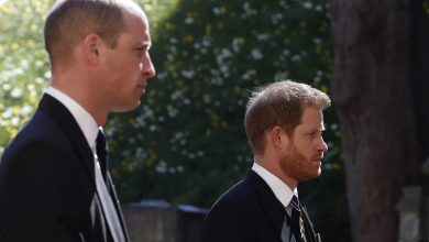 Photo of Prince Harry, Prince William, Charles Spoke Privately After Funeral