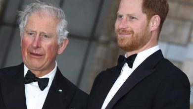 Photo of Prince Harry & Prince Charles Have not Totally Repaired Romance However
