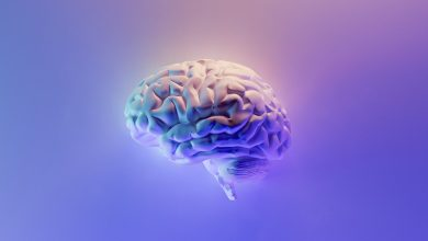 Photo of Neuralink Rival Receives Fda Permission to Exam Brain Chip in Individuals