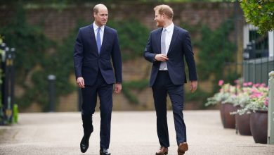 Photo of Prince Harry & Prince William Have Begun Healing Their Rift