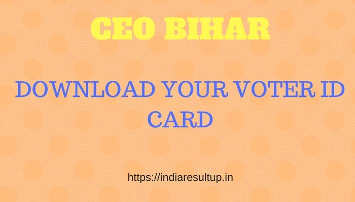 CEO Bihar