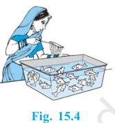 http://1.bp.blogspot.com/-Z84Elfd53kQ/Vnf-kYHDQuI/AAAAAAAAA3U/FrNs2aLXufg/s1600/class-10-maths-chapter-15-ncert-1.JPG