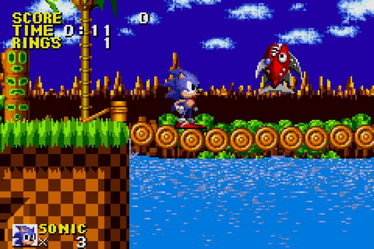 Sonic standing on a bridge in Green Hill Zone.