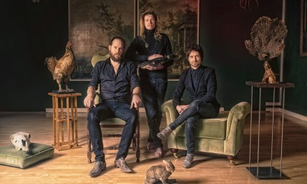 Certain Animals release new single 'Too Long'