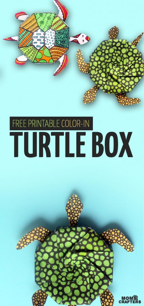 DIY Turtle Box Template and Coloring