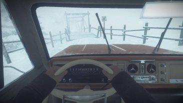 Kona game screenshot, driving