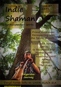 Indie Shaman Issue 37