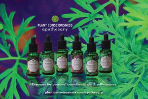 Plant Consciousness Apothecary