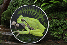 Frog Drum by Sharyn Turner at the Chalic Well, Glastonbury