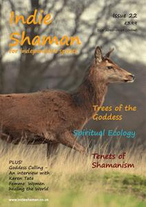 Indie Shaman Issue 22 PDF