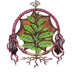 https://i2.wp.com/indigenouspeoplestf.org/toolkit/images/MNACT_Logo_white_web.jpg