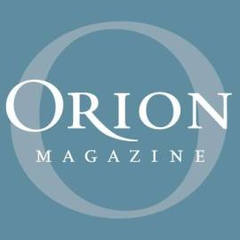 Orion magazine article