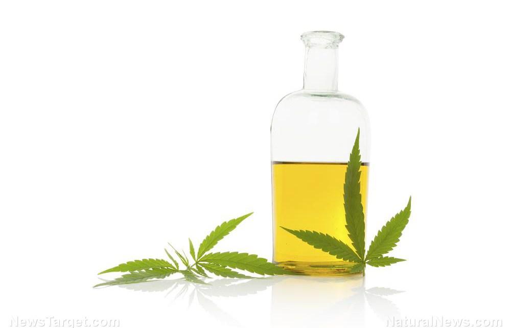 Actueel gebruik van marihuana: onderzoek vindt het effectief bij het kalmeren van huidproblemen zoals eczeem, psoriasis