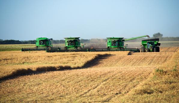 Monsanto proeft eindelijk zijn eigen gif