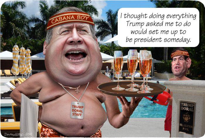 De stank van Trump zal de GOP-kandidaten nog jaren pijn doen