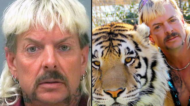 'Tiger King' en Amerika's gevangen tijgerprobleem