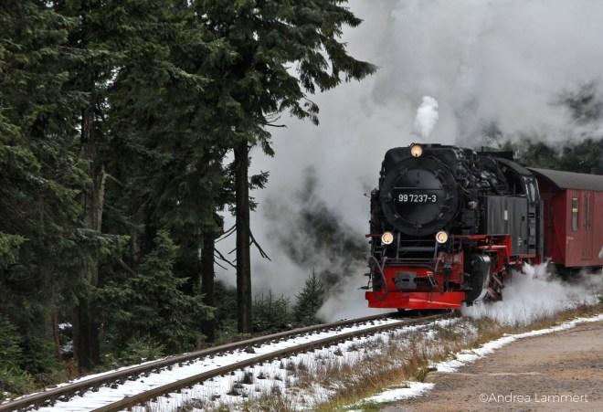 Harz, Brockenwanderung, Goetheweg, Torfhaus-Brocken