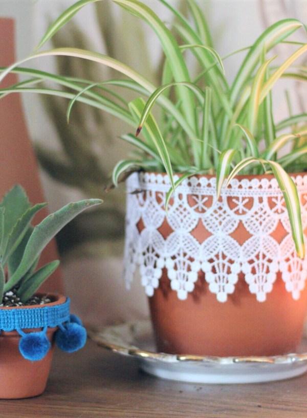 DIY Plant Baby Fringe