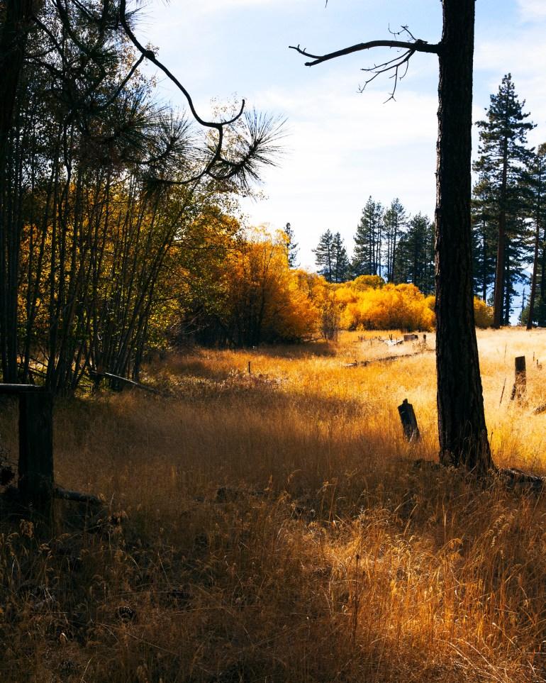 Lake Tahoe Hiking