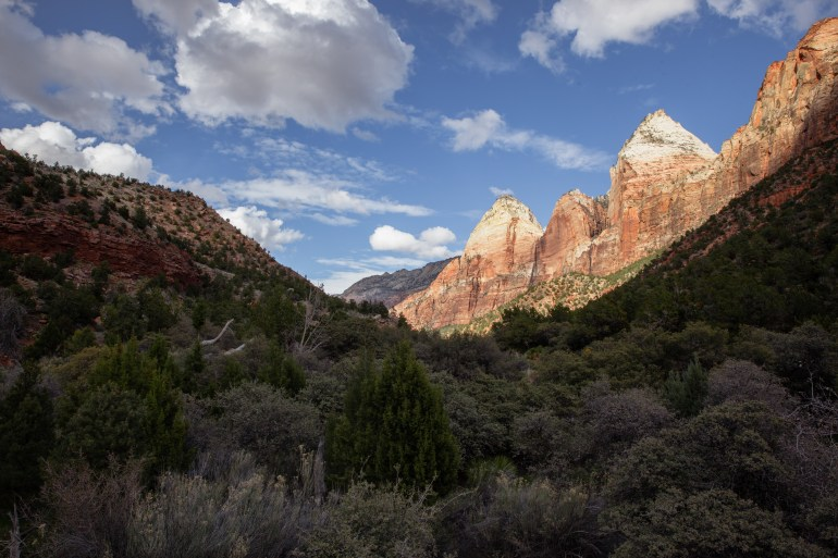 Canyon View Zion National Park