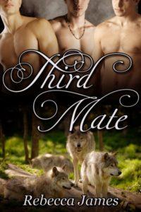 Third_Mate_400x600