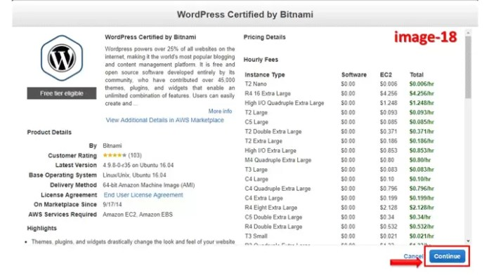 How to install Bitnami WordPress on AWS (Amazon Web Services) Step by Step guide in Hindi?