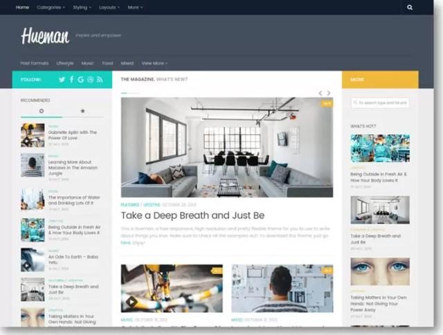 Best Theme for WordPress Blog in Hindi