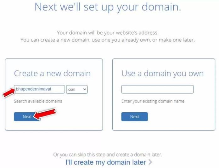 Bluehost Domain Name Settings