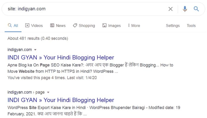 Google Me Site Indexing Kaise Check Kare